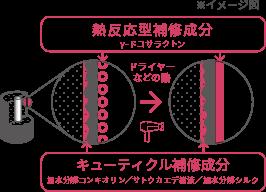 ナノ化した熱反応型補修成分とキューティクル補修成分で髪の毛を内側から補修のイメージ図