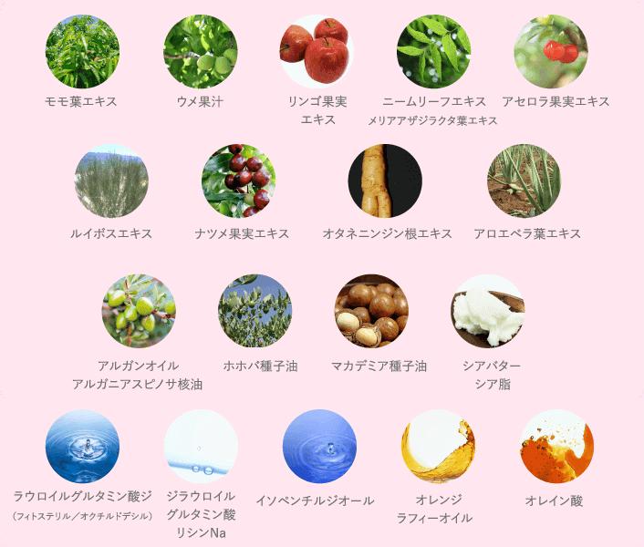 自然成分13種類/他成分5種類